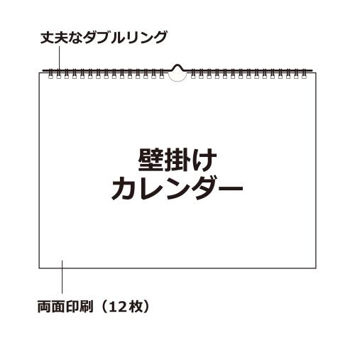 CLN-B3-01