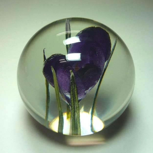 ハフォドグレンジ HafodGrange 花文鎮フラワーペーパーウエイト ポリエステル樹脂に本物の天然花 手作り イギリス製