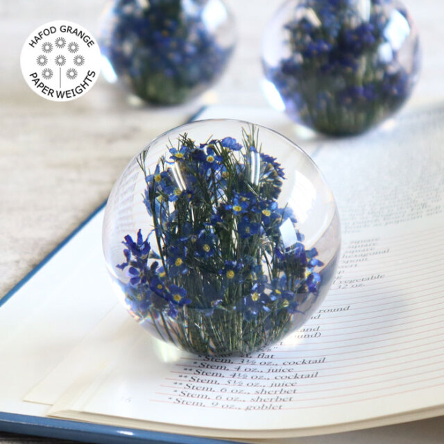 ハフォドグレンジ HafodGrange 花文鎮フラワーペーパーウエイト ポリエステル樹脂に本物の天然花 手作り