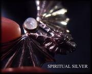 スピリチュアルシルバー ドラゴンの翼 画像1