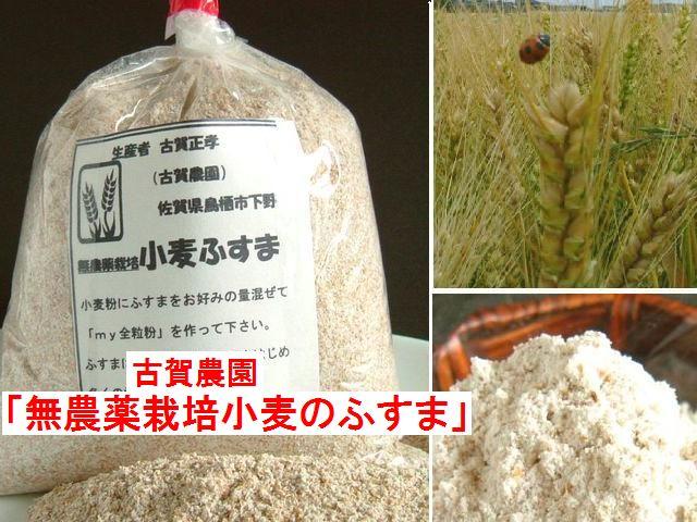 古賀農園 無農薬栽培小麦のふすま