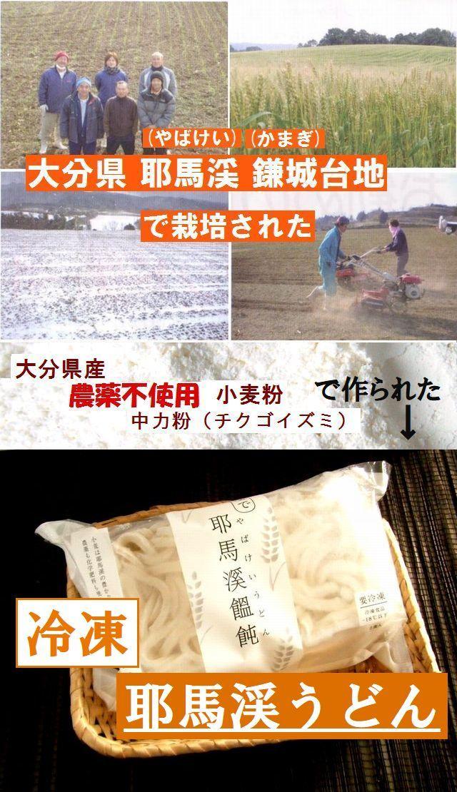 国産(大分県産)無農薬栽培小麦100% 冷凍耶馬渓うどん
