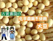 古賀農園 国産(佐賀県産)化学農薬不使用大豆1kg【無添加食品・自然食品】