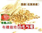 ご飯が美味しくなるモッチリ食感  古賀農園 (佐賀県)有機白もち麦(玄麦)500g【無添加食品・自然食品】