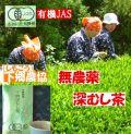 生産者の心感じる 下郷農協 有機JAS 無農薬深蒸し煎茶