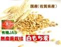 国産(佐賀県産)有機JAS取得有機無農薬栽培白もち麦(玄麦)