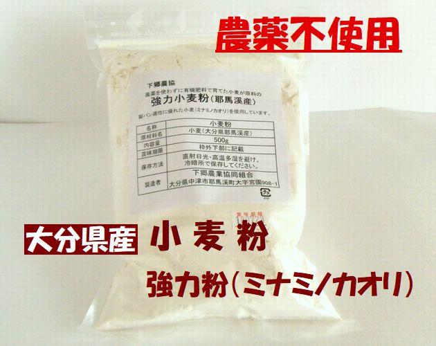 郷農協 大分県産 無農薬栽培 小麦(ミナミノカオリ) 強力粉 パン、ピザ生地