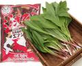 【予約開始】【配送指定日不可】行者ニンニク400g エゾ鹿バラジンギスカン1kg