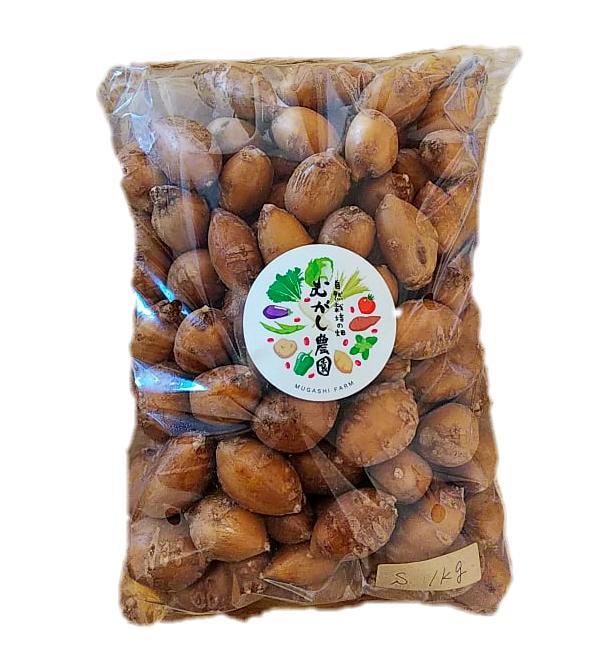 【農薬・肥料・化学物質を一切使用していない安心安全の自然栽培】 珍しい 生アピオス 1kg ほど芋 青森県産 Sサイズ混合 世界三大健康野菜【返品不可】
