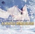デヴィッド・プランプトン  David Plumpton: Winter Wonderland (直輸入CD)