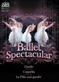 バレエ・スペクタキュラー BALLET SPECTACULAR (直輸入DVD-BOX)