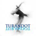 トゥーランドット フィギュアスケート・ミュージック(CD)