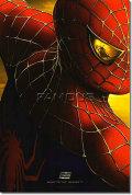 【映画ポスター】 スパイダーマン 2 Coming 2004 1st /マーベル アメコミ インテリア アート /フレーム別 /ADV-両面 glossy オリジナルポスター