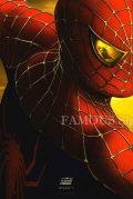 【映画ポスター】 スパイダーマン2 グッズ /マーベル アメコミ インテリア アート /フレーム別 /公開年入り 1st ADV-両面 glossy 2004 オリジナルポスター