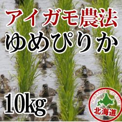 無農薬栽培 アイガモ農法 ゆめぴりか10kg 令和元年産米
