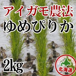 無農薬栽培 アイガモ農法 ゆめぴりか2kg 令和元年産米