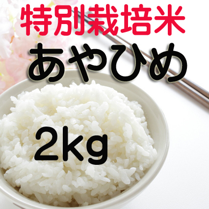 減農薬あやひめ2kg