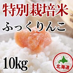 【北海道産】減農薬栽培 ふっくりんこ10kg 令和2年産米