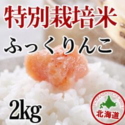 【北海道産】減農薬栽培 ふっくりんこ2kg 令和2年産米