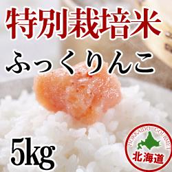 【北海道産】減農薬栽培 ふっくりんこ5kg 令和2年産米
