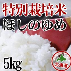 【北海道産】減農薬栽培 ほしのゆめ5kg 令和2年産米
