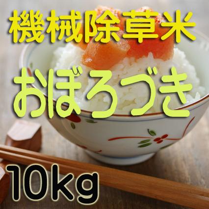 無農薬栽培 機械除草 おぼろづき10kg 令和元年産米