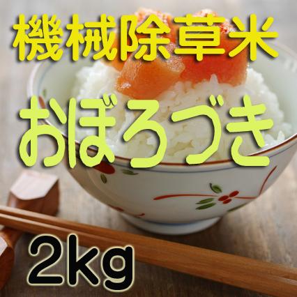 無農薬栽培 機械除草 おぼろづき2kg 令和元年産米