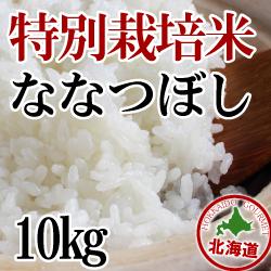 減農薬栽培 ななつぼし10kg 令和元年産米
