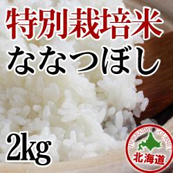 【北海道産】減農薬栽培 ななつぼし2kg 令和元年産米