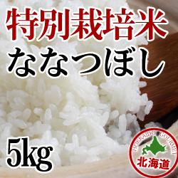 【北海道産】減農薬栽培 ななつぼし5kg 令和元年産米
