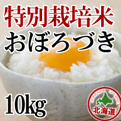 【北海道産】減農薬栽培 おぼろづき10kg 令和2年産米