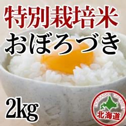 【北海道産】減農薬栽培 おぼろづき2kg 令和2年産米