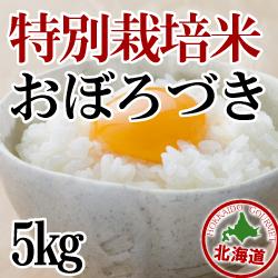減農薬栽培 おぼろづき5kg 令和元年産米