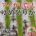 無農薬栽培 アイガモ農法 ゆめぴりか5kg 令和元年産米