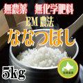 無農薬無化学肥料栽培 EM農法 ななつぼし5kg