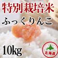 減農薬栽培 ふっくりんこ10kg