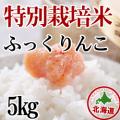 減農薬栽培 ふっくりんこ5kg