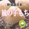 減農薬栽培 もち米10kg