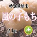 減農薬栽培 もち米2kg