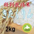 減農薬栽培きたくりん2kg