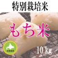 【北海道産】減農薬栽培 もち米10kg 令和2年産米