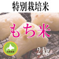 【北海道産】減農薬栽培 もち米2kg 令和2年産米