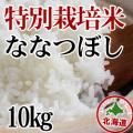 減農薬栽培 ななつぼし10kg