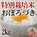 【北海道産】減農薬栽培 おぼろづき2kg 令和元年産米