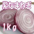 紫玉葱1kg