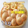 ちび玉(玉ねぎ)1kg