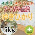 無農薬無化学肥料栽培 アイガモ農法 ゆきひかり5kg
