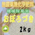 無農薬無化学肥料栽培 おぼろづき2kg 令和元年産米