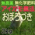 無農薬無化学肥料栽培 アイガモ農法 おぼろづき2kg