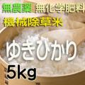 無農薬無化学肥料栽培 ゆきひかり5kg 令和元年産米